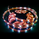 LED Strip 5050(F30-12V-10mm)