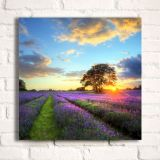 "Custom Gallery Wrapped Canvas Painting Print On Oil Canvas, Wall Art Pictures(27.56"" x 27.56"", Graphics and Frames Included)"