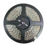 Esnek Şerit LED (60 SMD 5050 Ledler Başına Metre Su geçirmez IP65) 5m / rulo, R / G / B / G / Y Renkleri Şerit