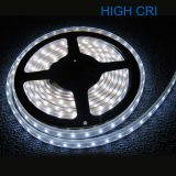 High CRI Super Brightness 5M Waterproof IP68 300 LED Strip Light 2835 SMD String Ribbon Tape Roll 12VDC