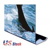 "Sample-US Stock-Whale Shape Good Quality Roll Up Banner Stand (33"" W x 79"" H) (Stand Only)"
