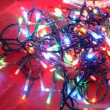 (6M)3 Wire LED Twinkle Light(green)
