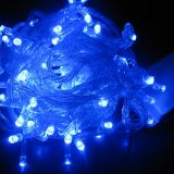 (6M)LED Clawed Light String