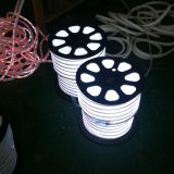 164´ (50m) LED Neon 2-Wire Rope Light Spool(24 LEDs per foot)