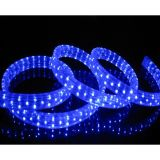 AC110V/220V High Voltage Rainbow Tube LED Rope Lights with Flat Five Lines 120 LEDs/M, 100m(328ft)/roll/pack