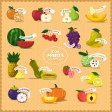 Different Kinds of Fruit Vector Stock Set Illustrations (Free Download Illustrations)