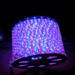 (100M)2 Wire LED Standard Rope Light