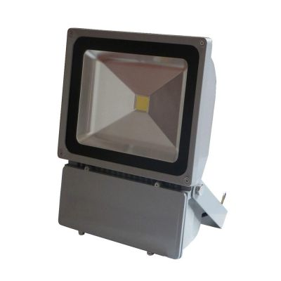 100 Watt 12-24VDC LED Flood Light