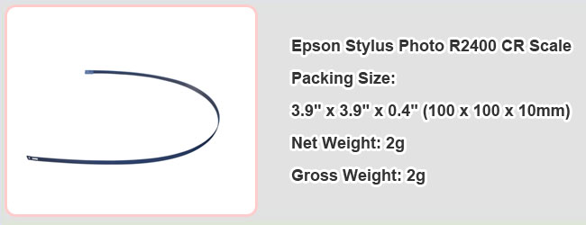 Epson Stylus Photo R2400 CR Scale details