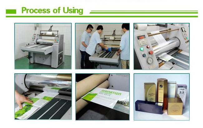 Thermal Laminating Film BOPP(Glossy)-TH20 usage